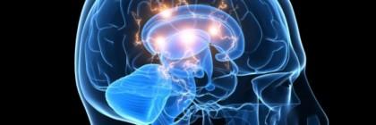 Brain_active_istock