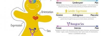 genderbread_chart
