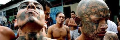 mexican_gangs