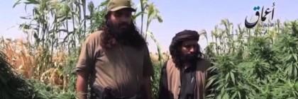 ISIS-Marijuana