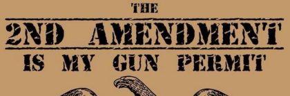 Second_Amendment1_-_Copy
