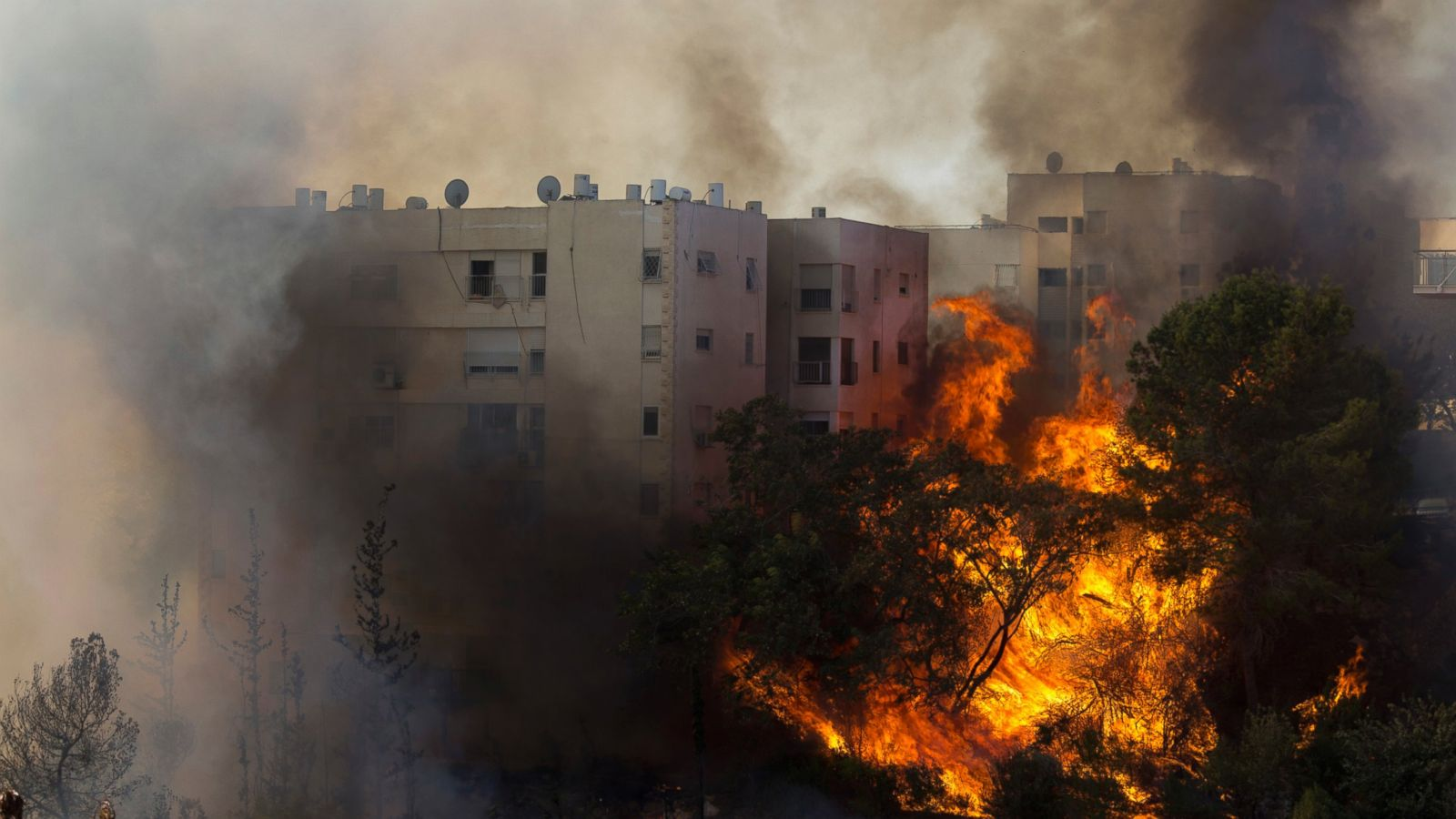 nothern_israel_fires